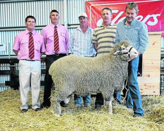 2013 Moorunide Poll Merino On Property Sale